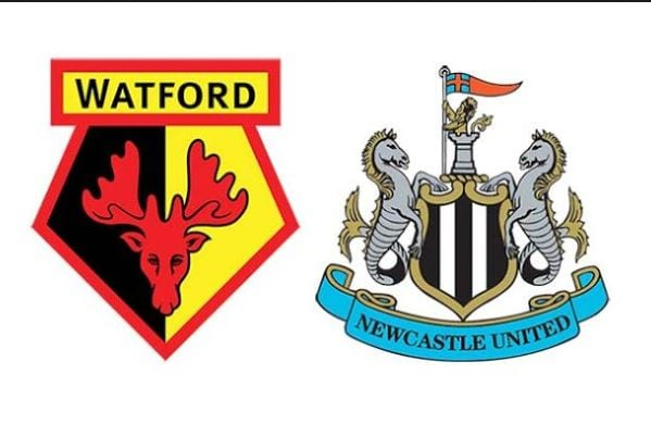 soi ty le keo watford vs newcastle hinh anh 1